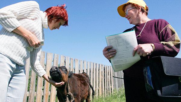 Первые итоги Всероссийской сельхозпереписи в РФ объявят в начале 2017 года - Росстат