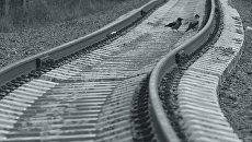 Железнодорожные рельсы. Архивное фото