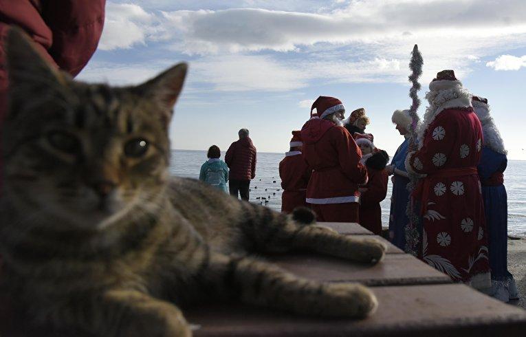 В Ялте прошел традиционный предновогодний Мороз-парад