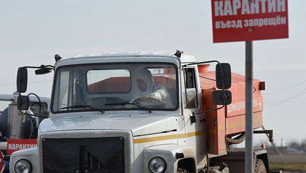 ВЛенинском районе Крыма ввели карантин из-за вспышки АЧС