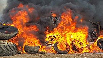 Сжигание свиных туш в Раздольненском районе