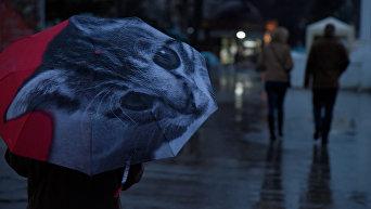 Дождь в Севастополе
