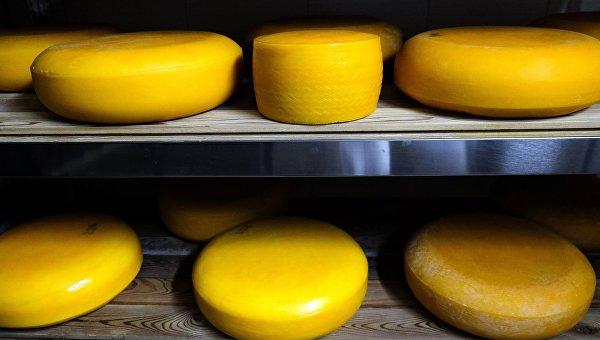 ВСимферополе изъяли исожгли 50кг европейских сыров имясных изделий