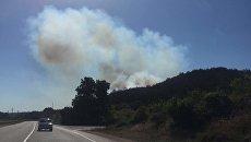 Лесной пожар в Севастополе
