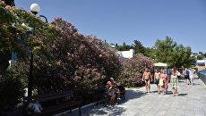 Лето в Гурзуфе