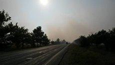 В крымском Раздолье ночью горел мусорный полигон
