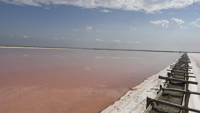 Добыча крымской розовой соли на озере Сасык-Сиваш