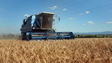 Уборка зерновых в Крыму