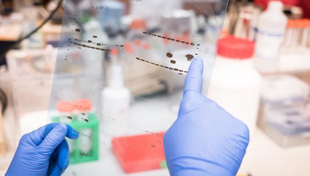 Ученый рассматривает результаты лабораторных исследований
