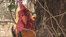 Директор Одесского зоопарка оделся петухом и спел песню