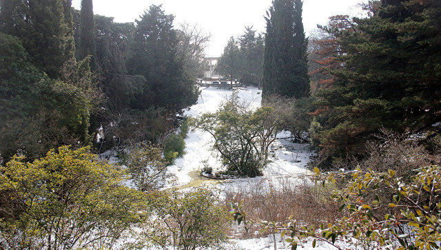 Никитский ботанический сад, парк Монтедор