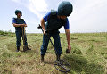 Разминирование территорий в ДНР
