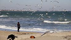 Зимний пляж Феодосии