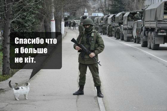 Шуточная картинка по поводу украинского произношения слова кот