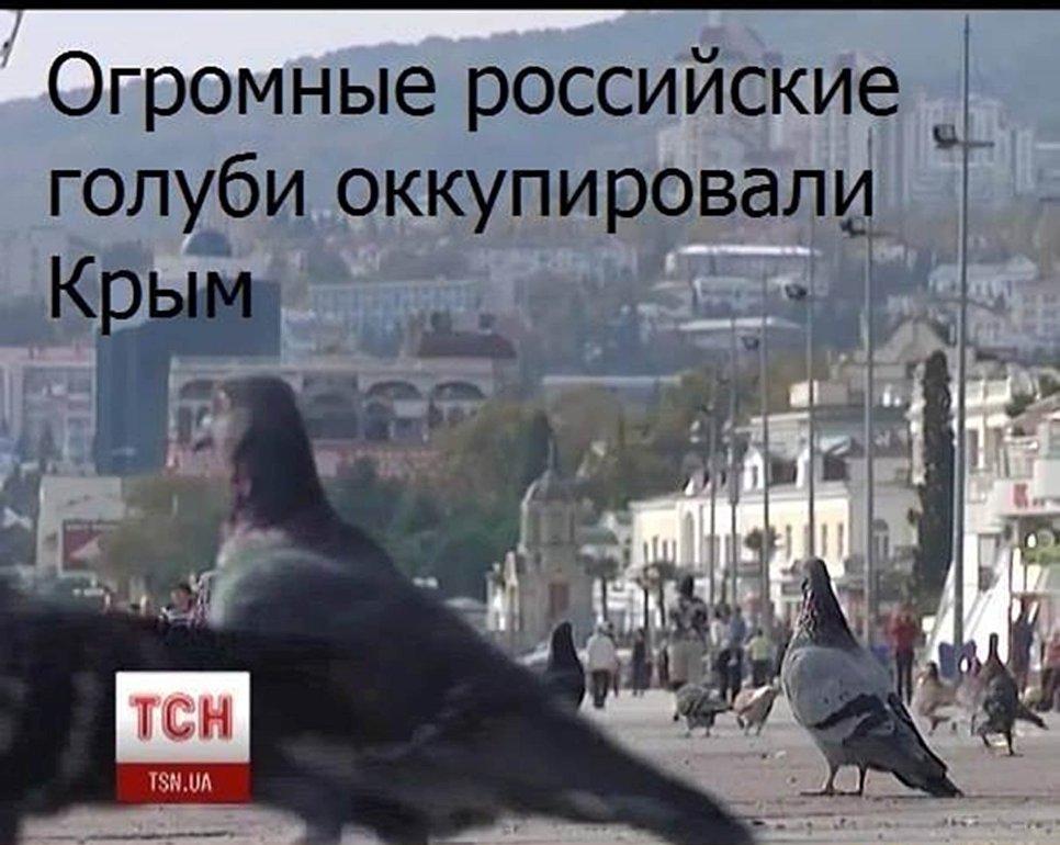 Шуточная картинка по поводу так называемой оккупации Крыма