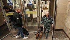 Сотрудник правоохранительных органов с собакой на станции Садовая в Санкт-Петербурге