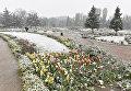 Снег в Симферополе. 23 апреля 2017