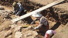 Экспедиция музея-заповедника Херсонес Таврический обнаружила уникальный комплекс при раскопках на античной усадьбе