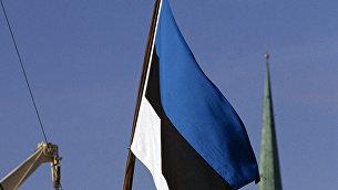 Государственный флаг Эстонии. Архивное фото