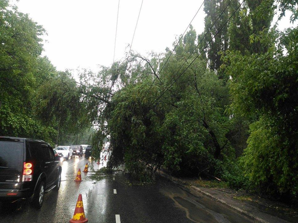Из-за мощного ливня местные улицы превратились вреки— Симферополь заливает водой