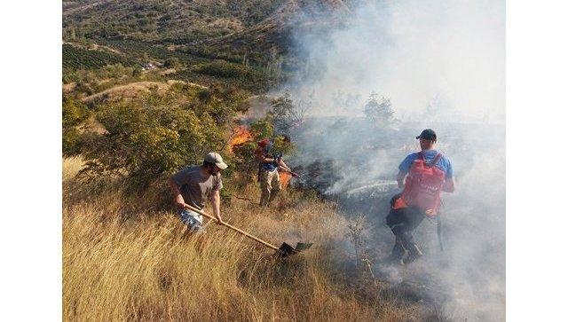 Около 500 человек гасят крупный лесной пожар вКрыму
