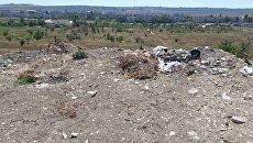 Активисты ОНФ провели рейд по несанкционированным свалкам в Керчи
