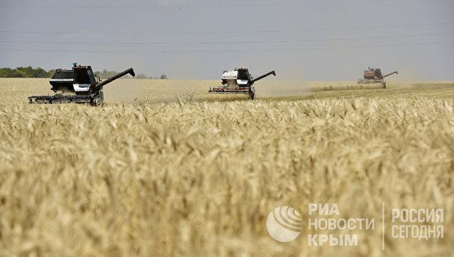 Уборка зерновых в Белогорском районе Крыма