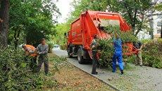 Рабочие обрезают растения в сквере им. К. Тренева в Симферополе