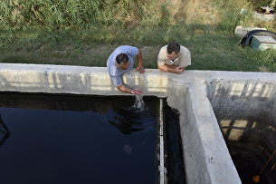 Жители поселка Коктебель проверяют качество воды в отстойнике очистных сооружений