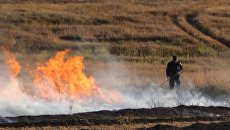 Загорание травы в Симферопольском районе