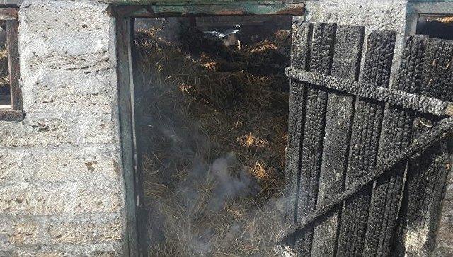 Возгорание в подсобном помещении кооператива в Первомайском районе