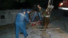 В Ялте спасатели достали из канализации лошадь