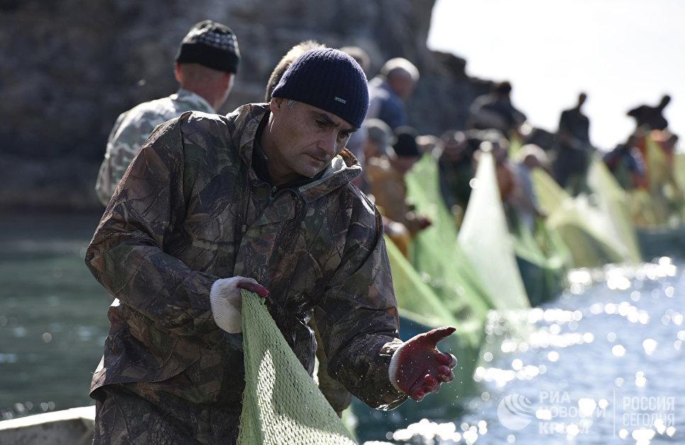 Рыбаки во время ловли рыбы при помощи сетей на мысе Тарханкут. Большой Атлеш