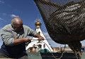 Рыбак во время ловли рыбы на мысе Тарханкут. Большой Атлеш