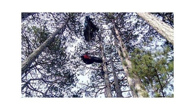 ВКрыму парапланерист застрял наверхушке 25-метровой сосны