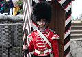 Участник военно-исторического фестиваля Русская Троя, Севастополь