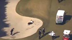 Скриншот с видео, на котором премьер-министр Японии упал в яму во время игры в гольф с президентом США Дональдом Трампом