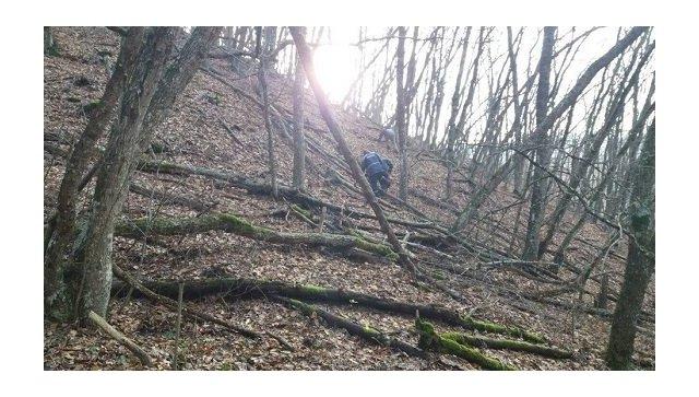 Спасатели оказали помощь мужчине, заблудившемуся в горах в Старом Крыму