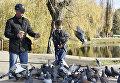 Мужчина и мальчик кормят голубей в парке им. Гагарина в Симферополе