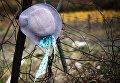 Осень в Крыму. Дамская шляпа висит на проволочном заборе в Ялте