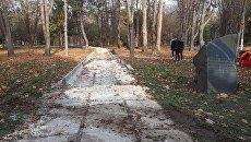 Реконструкция в парке им. Гагарина в Симферополе