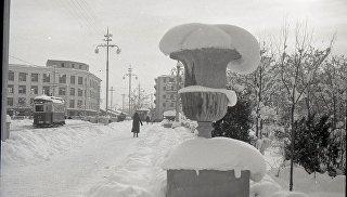 Сквер Тренева в Симферополе зимой
