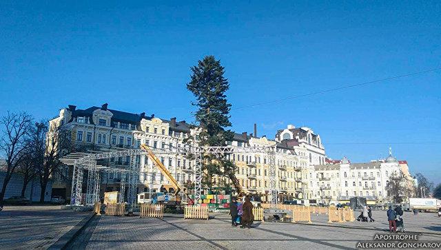 «Куда катится эта страна»: в Сети активно обсуждают главную новогоднюю елку Киева - фото