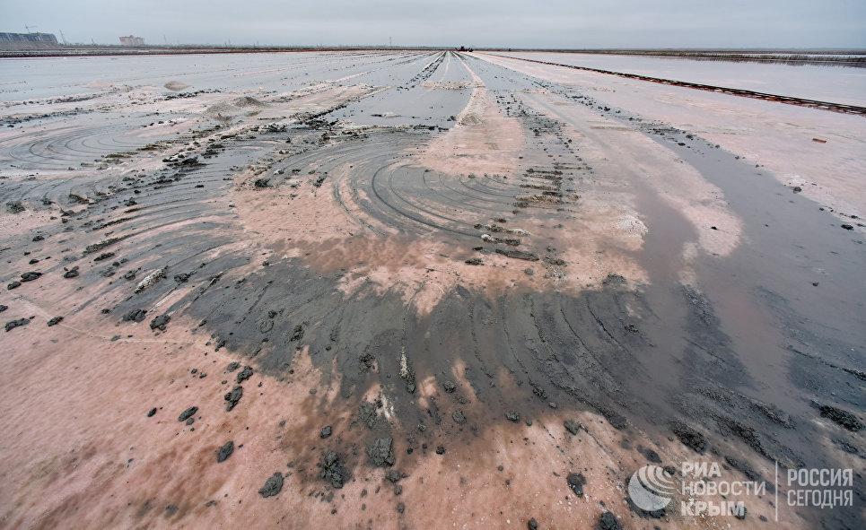 Добыча розовой соли на на озере Сасык-Сиваш в Сакском районе