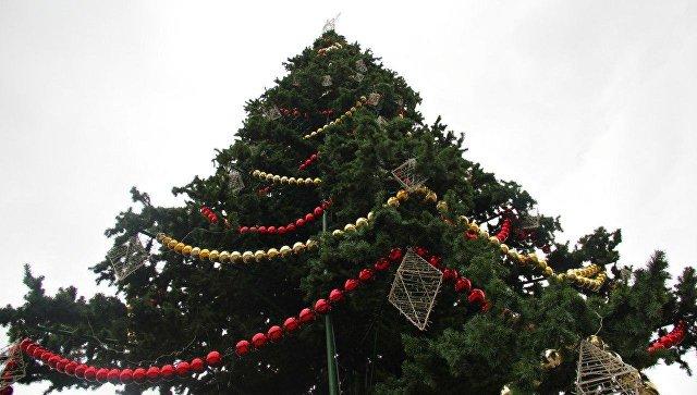 ВСимферополе зажгли главную Новогоднюю елку