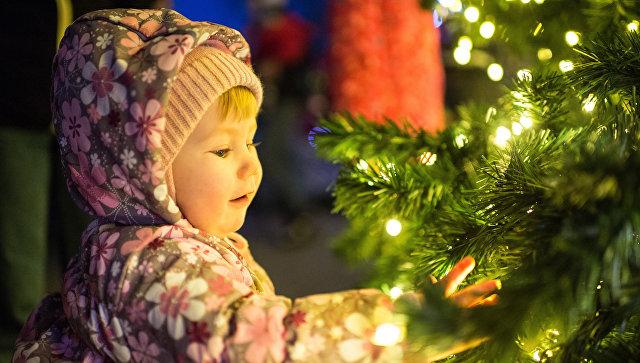 Главная новогодняя ёлка города Севастополя
