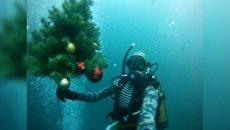 Казанские дайверы установили новогоднюю елку под водой в 39-й раз