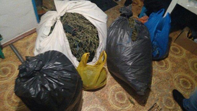 ФСБ перекрыла канал наркотрафика из Крыма в Москву