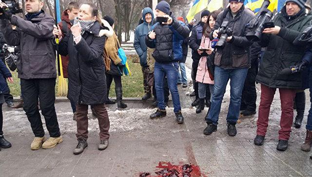 Радикалы забросали несвежим мясом участников акции, посвященной 75-летнему юбилею Сталинградской битвы в Запорожье. 2 февраля 2018