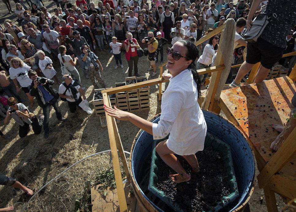 Фестиваль молодого вина Wine Fest в Балаклаве
